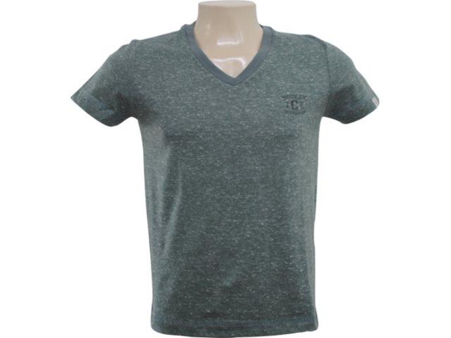 Camisa Masculina Hering 4c3d 1c10s Verde Estonado