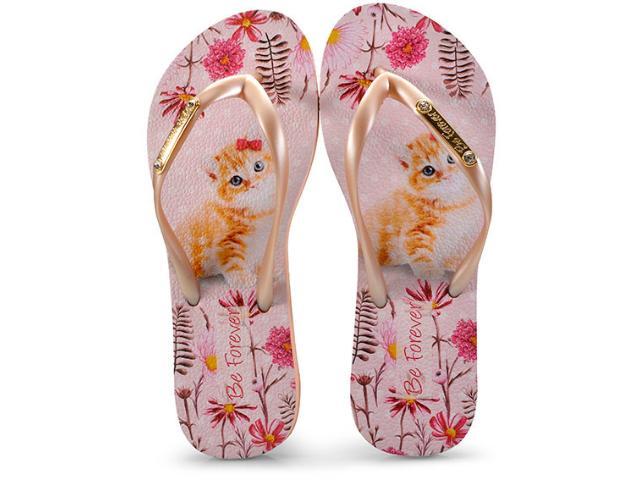 Chinelo Feminino Rafitthy 110.81702 Cat Garden Dourado/rosa