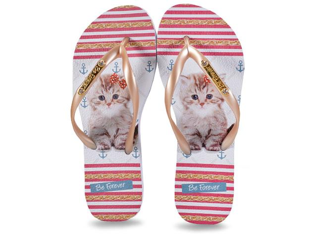 Chinelo Feminino Rafitthy 110.81702 Placa Red Cat  Dourado