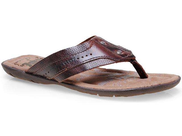 Chinelo Masculino West Coast 47685/02 Café