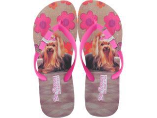Chinelo Feminino Rafitthy 11.31702 York Carpet Off Pink - Tamanho Médio