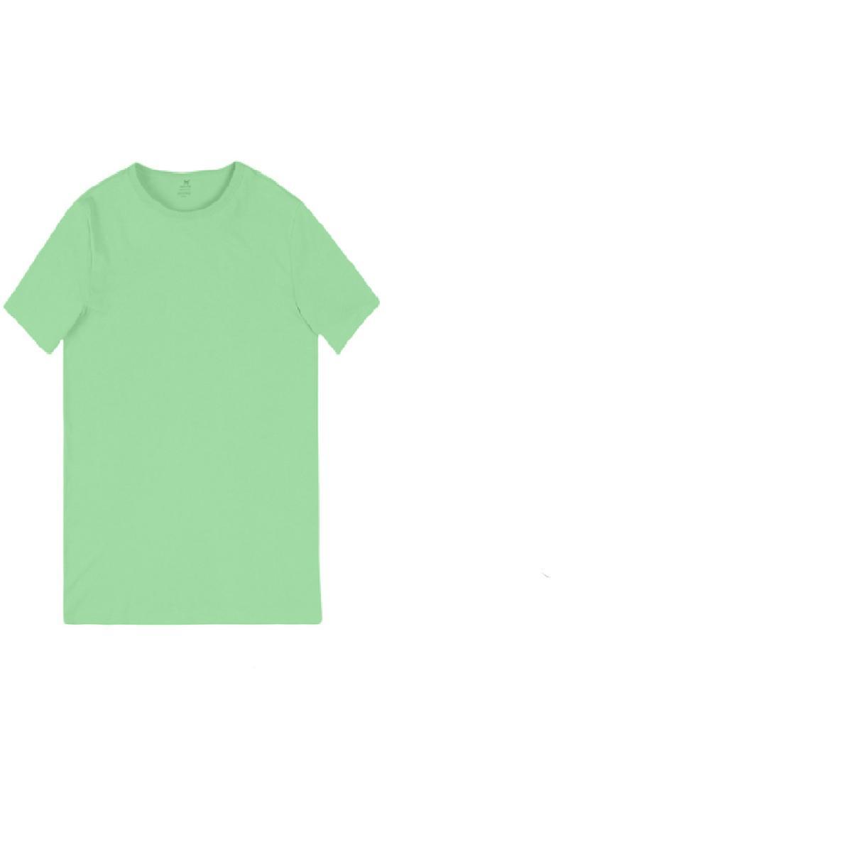 Camiseta Masculina Hering 0299 Wg4en Verde Claro