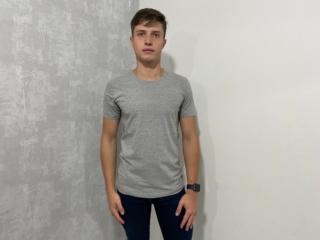 Camiseta Masculina Colcci 350107768 63007 Mescla - Tamanho Médio