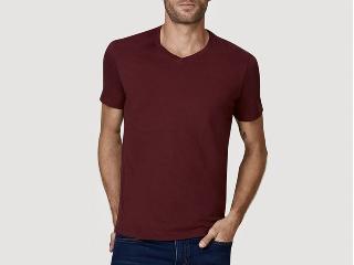 Camiseta Masculina Hering 022b Rwren Bordo - Tamanho Médio