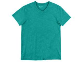 Camiseta Masculina Hering N2k5 W9ben Verde - Tamanho Médio